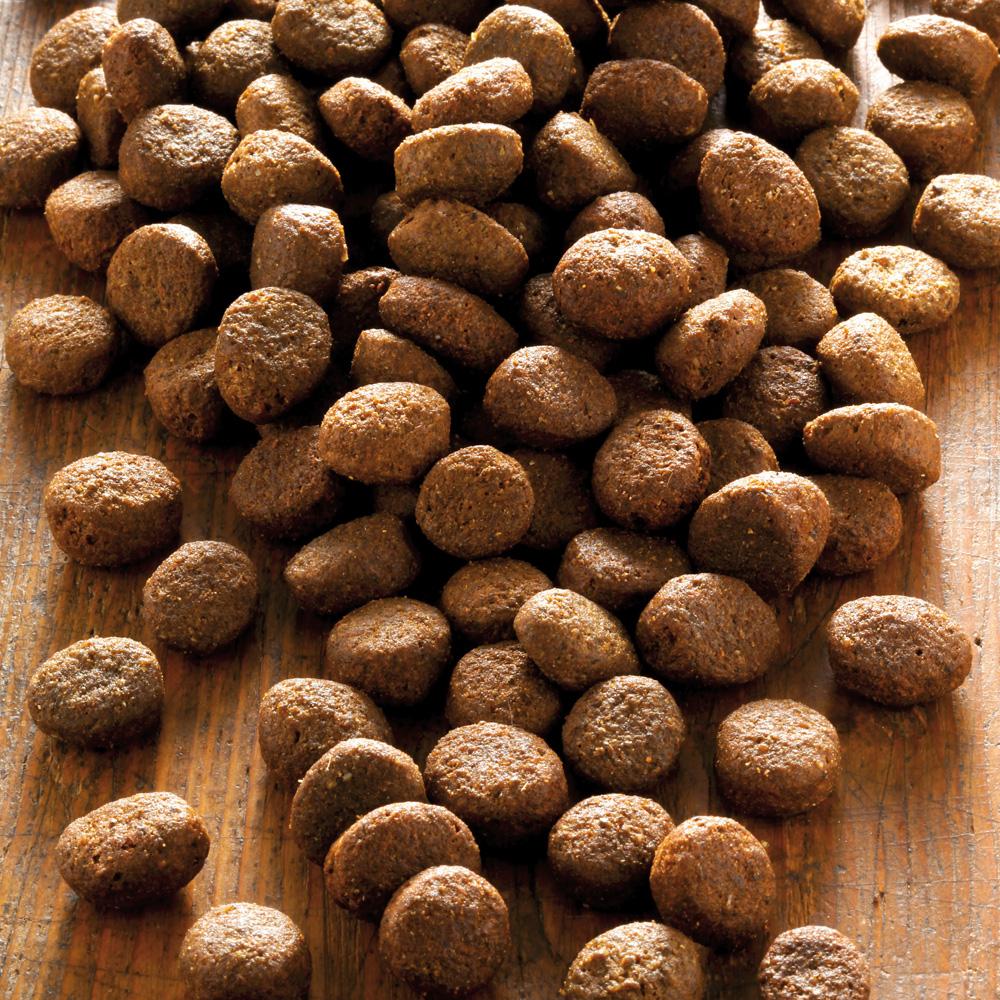 alsa-nature Sensigon Eend & Aardappel granenvrij