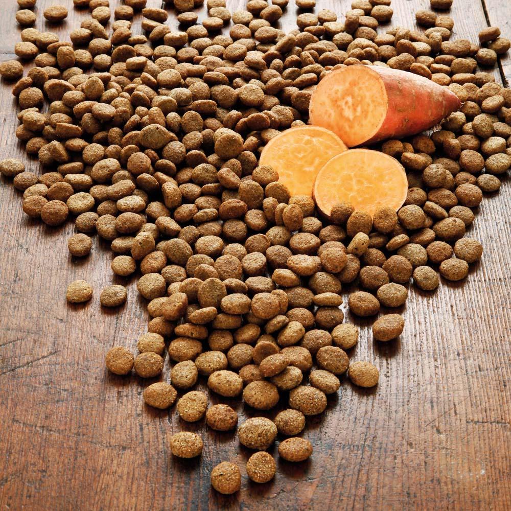 alsa-nature Eend & Zoete aardappel granenvrij