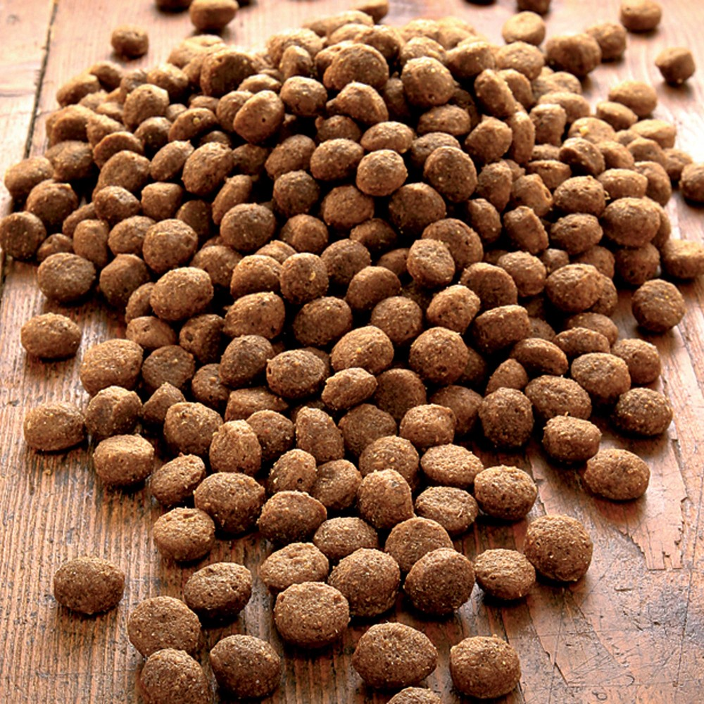 alsa-nature Senso Trockenfutter, 3 kg - alsa-hundewelt