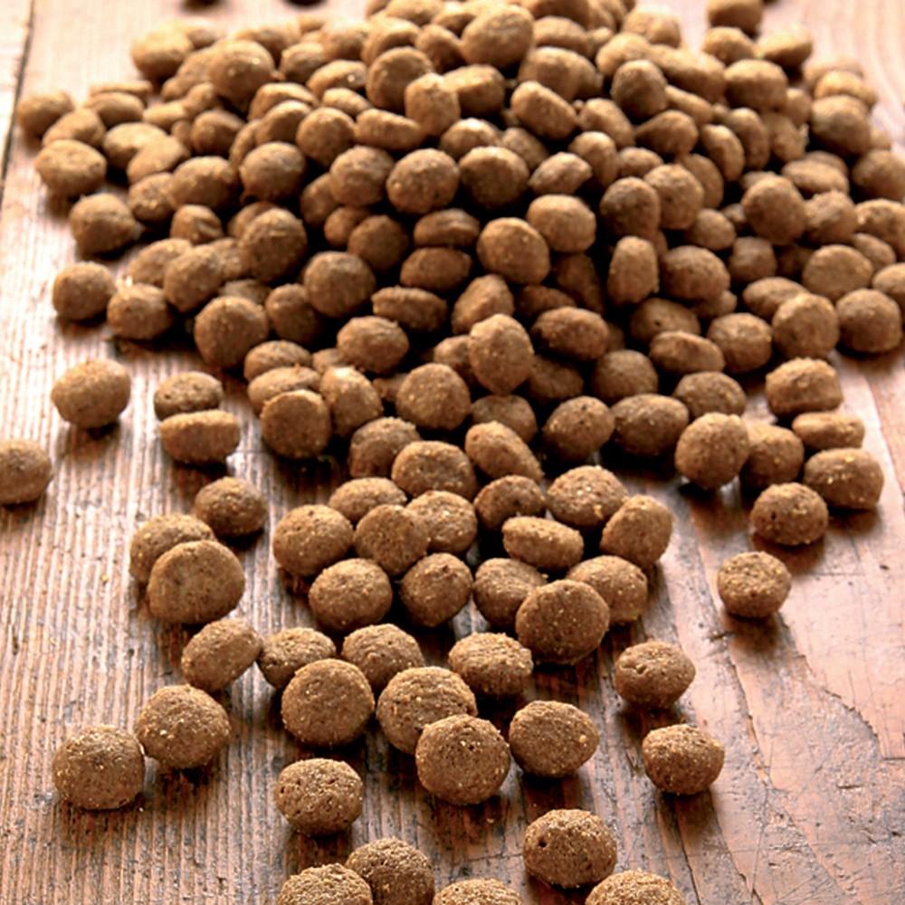 alsa-nature Senso Medial Protein Trockenfutter, 3 kg - alsa-hundewelt