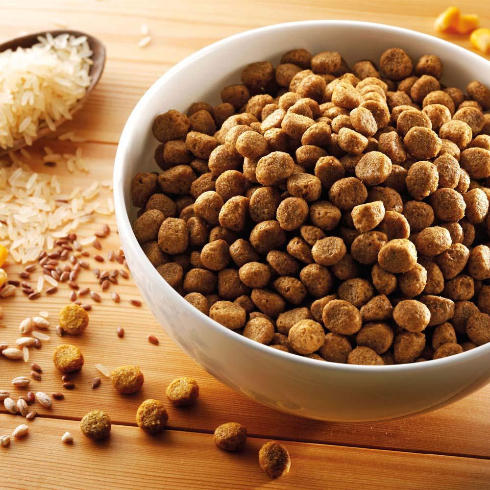 alsa-nature Hundefutter vegetarisch, 3 kg