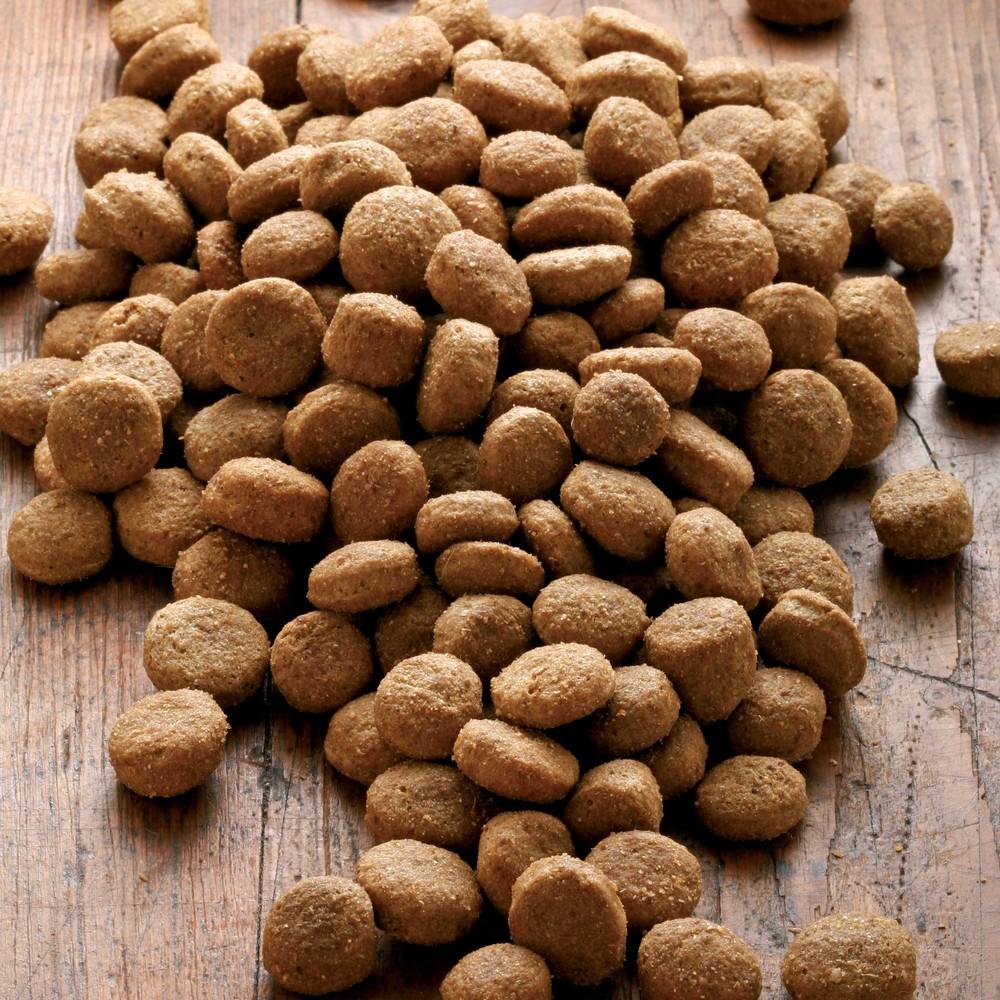 alsa-nature Big-Junior Medial Protein Trockenfutter, 3 kg - alsa-hundewelt