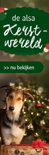 alsa kerstwereld