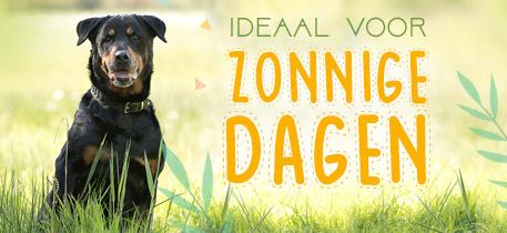 Hier vindt u waterspeelgoed, functionele ligbedden, praktische accessoires en natuurlijke hondenvoeding.