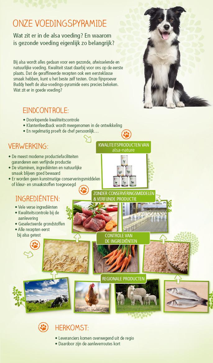 ONZE VOEDINGSPYRAMIDE Wat zit er in de alsa voeding? En waarom is gezonde voeding eigenlijk zo belangrijk? Bij alsa wordt alles gedaan voor een gezonde, afwisselende en natuurlijke voeding. Kwaliteit staat daarbij voor ons op de eerste plaats. Dat de geraffineerde recepten ook een eersteklasse smaak hebben, kunt u het beste zelf testen. Onze fijnproever Buddy heeft de alsa-voedings-pyramide eens precies bekeken. Wat zit er in goede voeding?  EINDCONTROLE:  Doorlopende kwaliteitscontrole Klantenfeedback wordt meegenomen in de ontwikkeling En regelmatig proeft de chef persoonlijk ...  VERWERKING:  De meest moderne productiefaciliteiten garanderen een verfijnde productie De vitaminen, ingrediënten en natuurlijke smaak blijven goed bewaard Er worden geen kunstmatige conserveringsmiddelen of kleur- en smaakstoffen toegevoegd  INGREDIËNTEN:  Vele verse ingrediënten Kwaliteitscontrole bij de aanlevering Geselecteerde grondstoffen Alle recepten eerst bij alsa getest  HERKOMST:  Leveranciers komen overwegend uit de regio Daardoor zijn de aanleverroutes kort